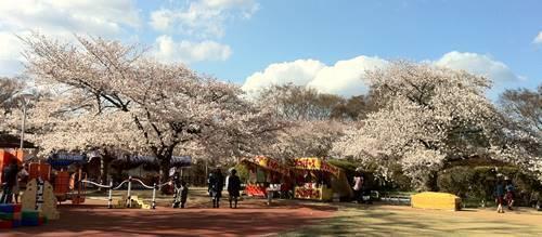 松ケ岡公園.JPG