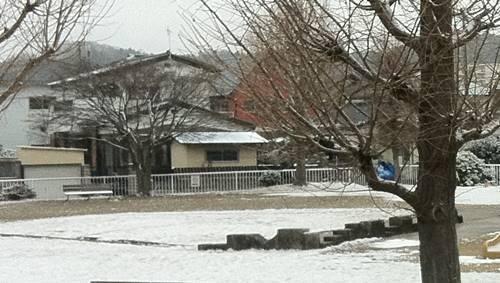 2019年2月9日 雪景色.jpg