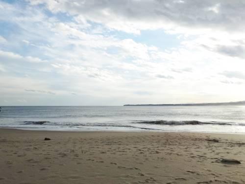 太平洋 砂浜