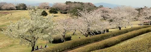 いわき市小名浜 三崎公園 (4).JPG