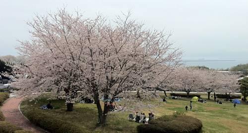 いわき市小名浜 三崎公園 (5).JPG