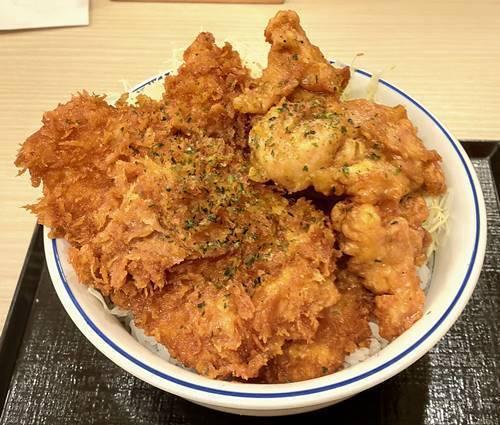かつや タレカツとから揚げの合い盛り丼.jpg
