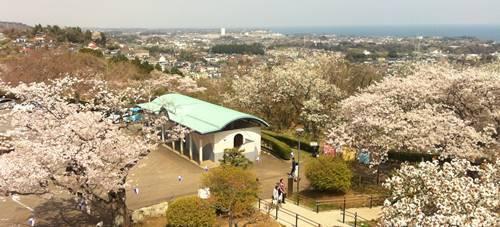 かみね公園 (2).JPG
