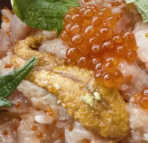 くら寿司 感動のくらランチ 旬の海鮮丼 うに&いくら.jpg