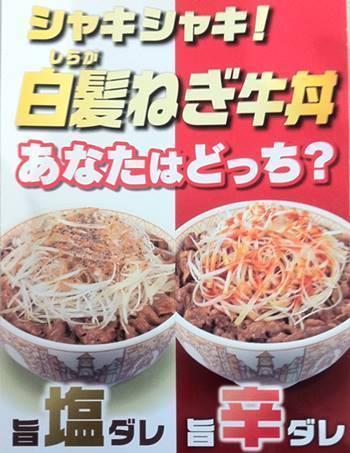 すき家 白髪ねぎ牛丼 広告.JPG