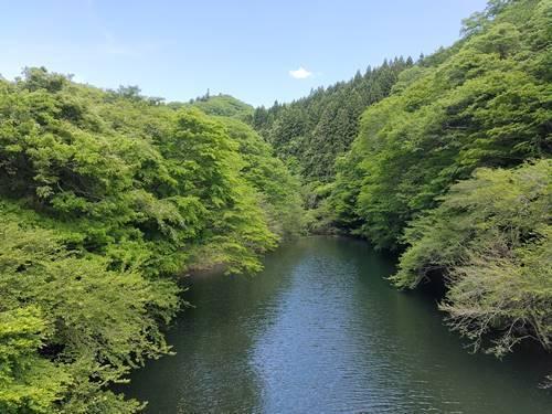 北茨城市 水沼ダム (1).jpg