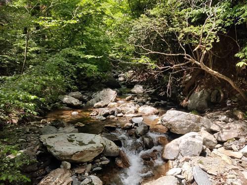 北茨城市 花園神社 川.jpg
