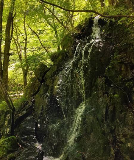 北茨城市 花園神社 石尊の滝.jpg