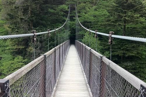 回顧の吊橋.JPG