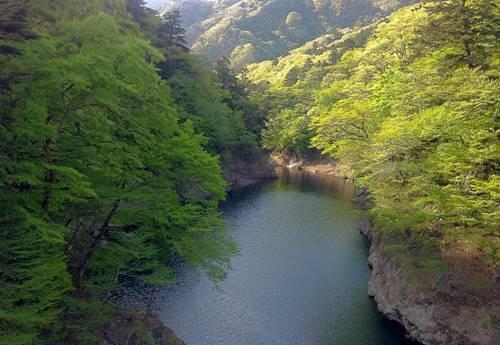 回顧の吊橋2.JPG
