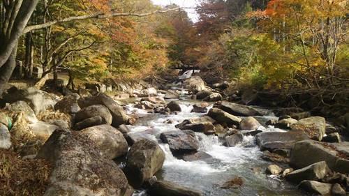 山鶏滝遊歩道1.JPG