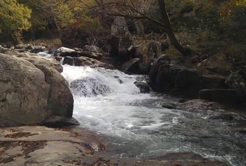 山鶏滝遊歩道2.JPG