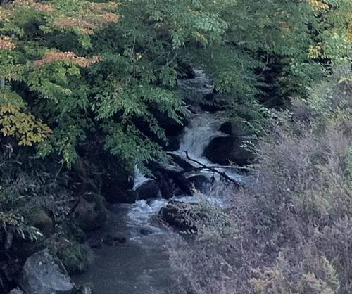 川内村 川1.JPG