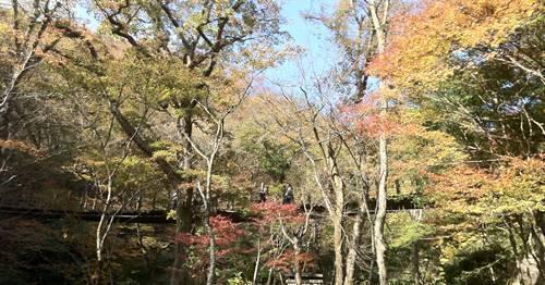 汐見滝吊り橋1.JPG