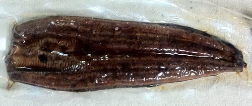 海老仙 鰻のかば焼き.JPG