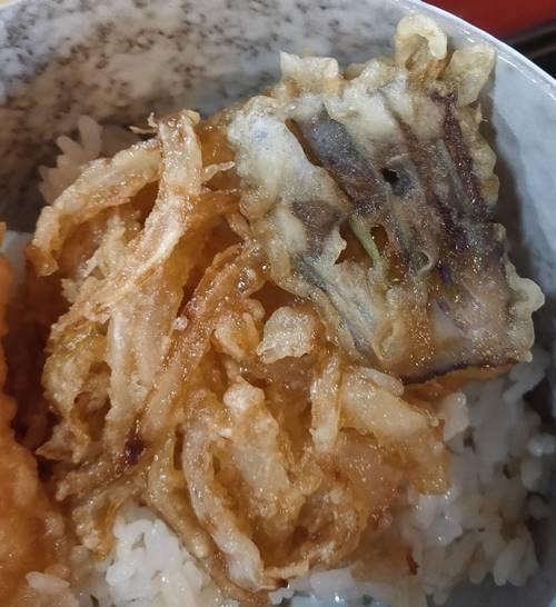 田人味おやじがんこそば  かき揚げ&茄子天.jpg
