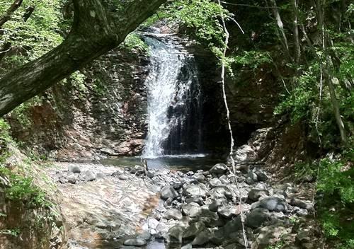竪琴の滝.JPG