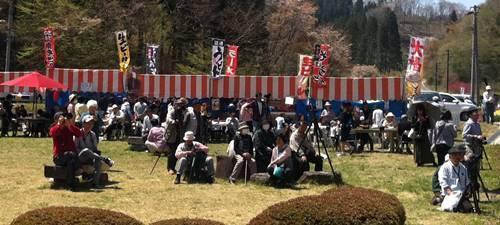 越代の桜8.JPG