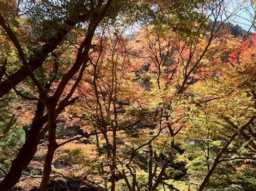 龍神峡3.JPG